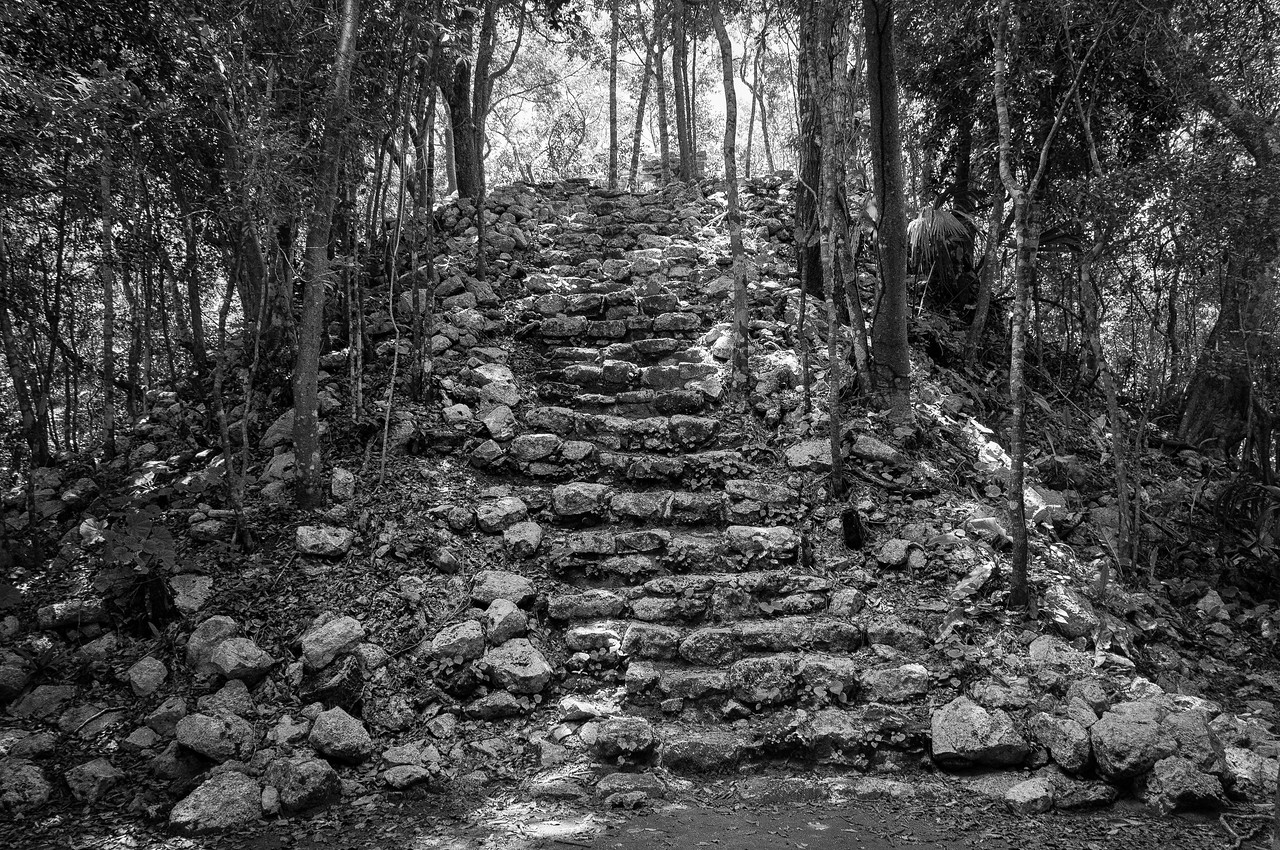 Steps in the jungle of Mayan Riviera, Mexico