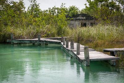 Bridge near mangrove in Mayan Riviera, Mexico