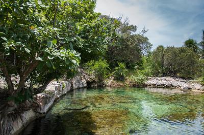 Cenote in Playa del Carmen, Mayan Riviera, Mexico