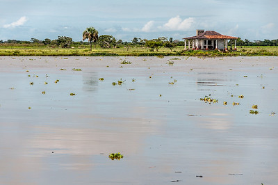 Murky river water in Tlacotalpan, Mexico