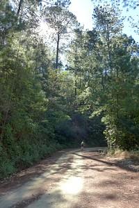 Abfahrt nach Llano de León