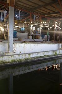 Finca Peru Paris: Wasch- und Schälstrasse der Kaffeefrüchte (benifcio humedo)