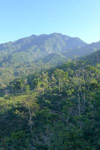 Finca Peru Paris: Sicht über das Kaffeetal