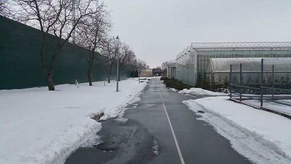 This walk leads to the private zoo..see that fence to our left?It is 5 metres high.