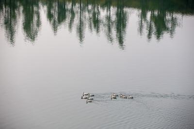 2021 оны наймдугаар сарын 8. Хөвсгөл аймгийн Хатгал сум. Хөвсгөл нуур.  ГЭРЭЛ ЗУРГИЙГ Б.БЯМБА-ОЧИР/MPA