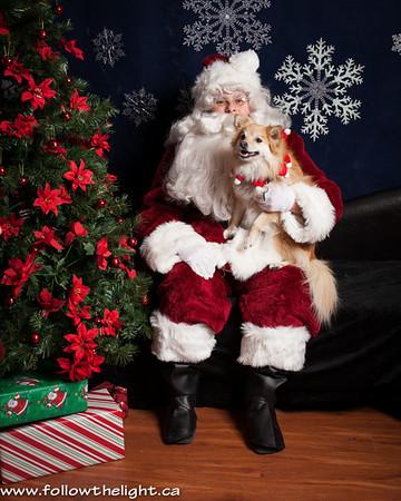 Pet Value Photo with Santa
