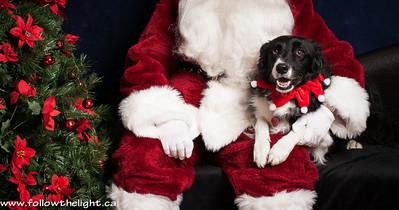 See Santa, I'm a good dog! Pet Value Photo with Santa