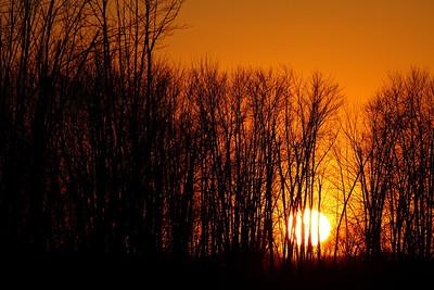 February 23 / Pétrie Sunset