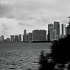 Miami City Line 1.3