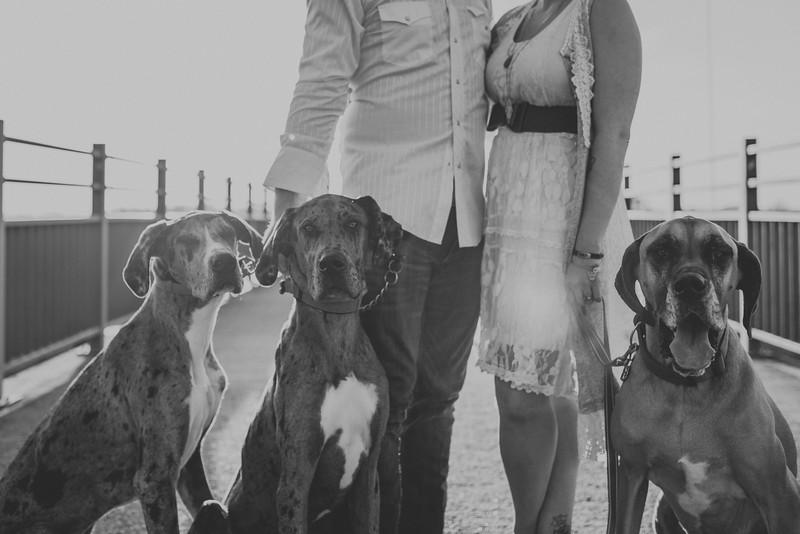 Nashville Wedding Collection-611