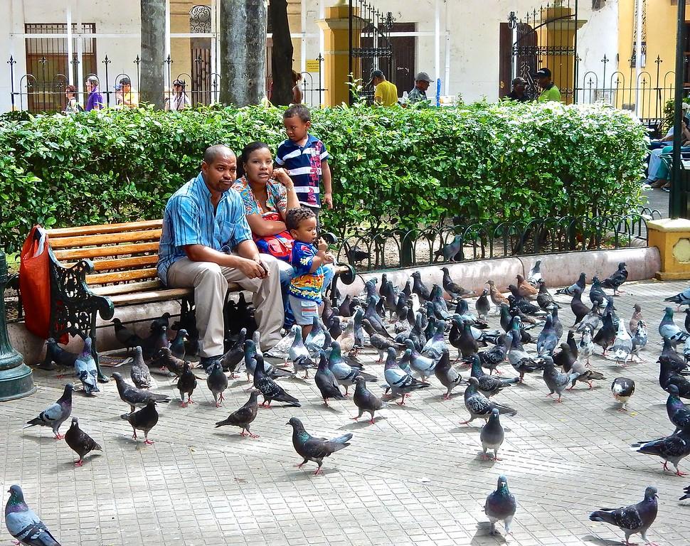 Feeding the Pigeons, Cartagena