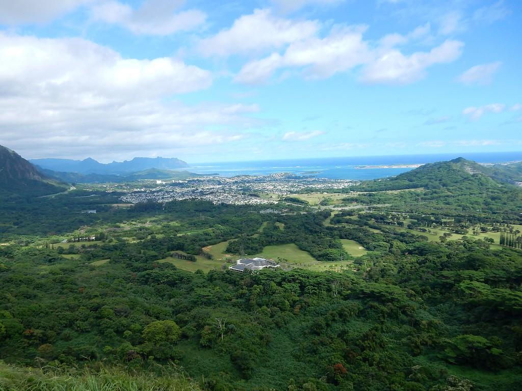 Honolulu Panorama