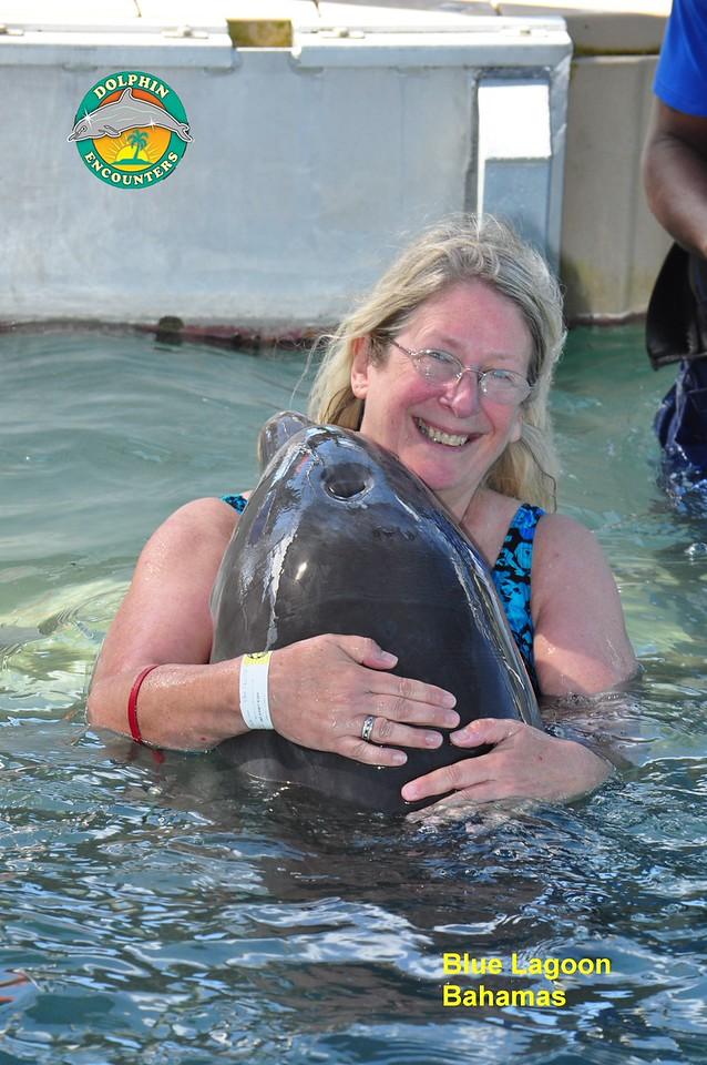 Hugging a Dolphin, Nassau