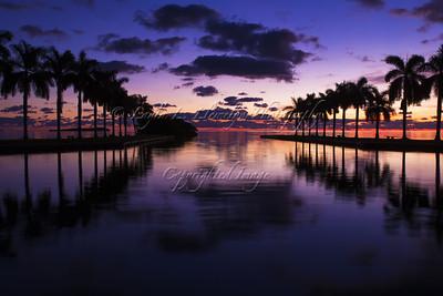Miami Smolder