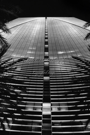Day 80 Curves and Lines: Miami Architecture--The Conrad