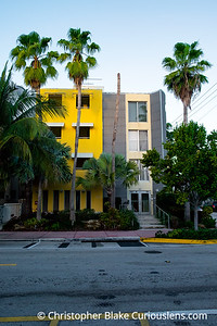 South Beach House and Palm Trees