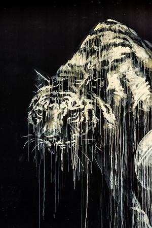 Tiger wall art at Wynwood Arts District