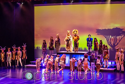20180228_2018_lion_king_ms_3