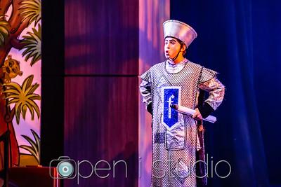 20180501_2018_us_musical_shrek_28