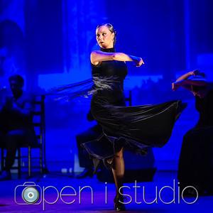 2018_cultural_arts_suidy_flamenco-18
