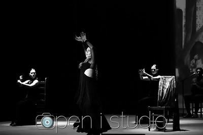 2018_cultural_arts_suidy_flamenco-13