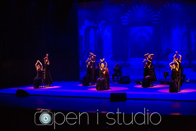 2018_cultural_arts_suidy_flamenco-7