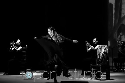 2018_cultural_arts_suidy_flamenco-14