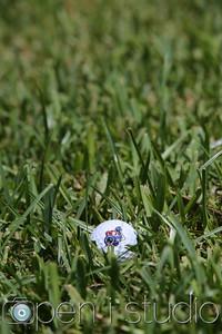 20140903__golf-24