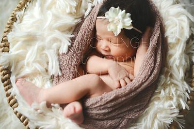 IOP-Mia's Newborn-127