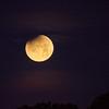 Moon 1_31  004