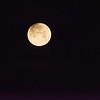 Moon 1_31  002