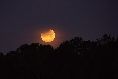 Moon 1_31_18