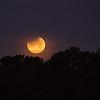 Moon 1_31  007