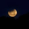 Moon 1_31  009