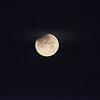Moon 1_31  003