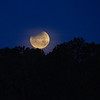 Moon 1_31  010