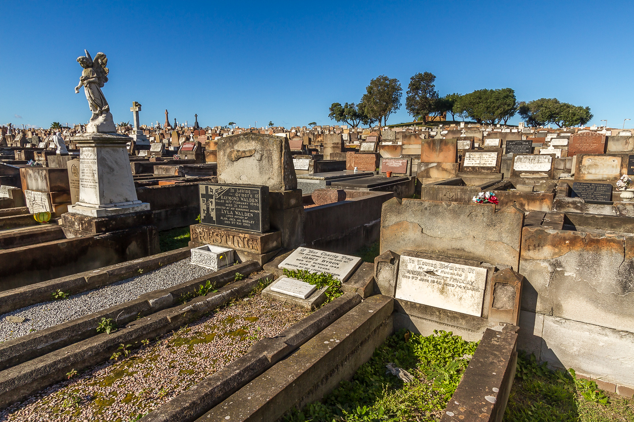 Eastern Suburbs Memorial Centre. This huge cemetery is divided up into areas of different religions with street names like Catholic Ave. It's a mass of concrete and stone tombs.
