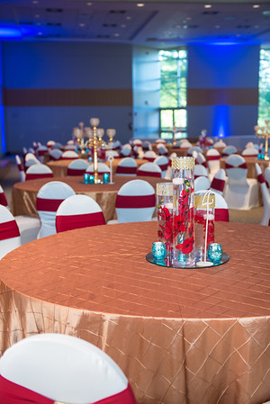 Michele and Kunal's Indian Reception