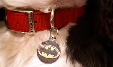 December 2 Bat/Tan Man