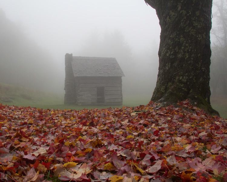 Jesse Brown's Cabin in the Fog