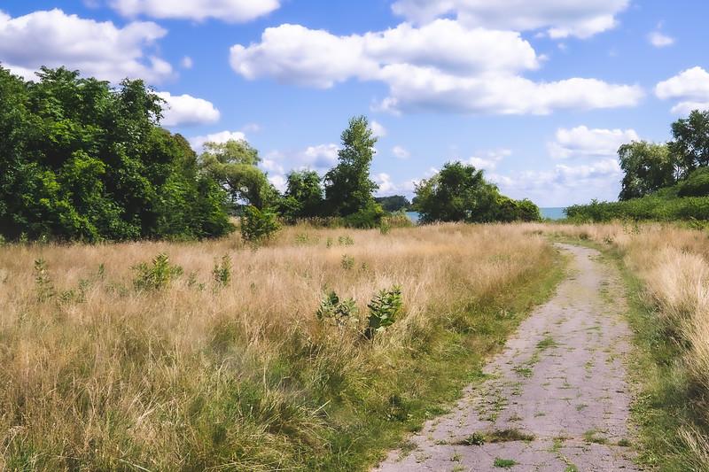 Trail through Belle Isle State Park