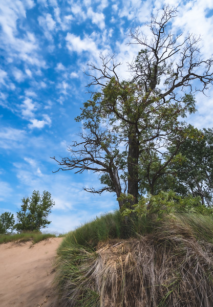 Charles Mears State Park in Pentwater Michigan