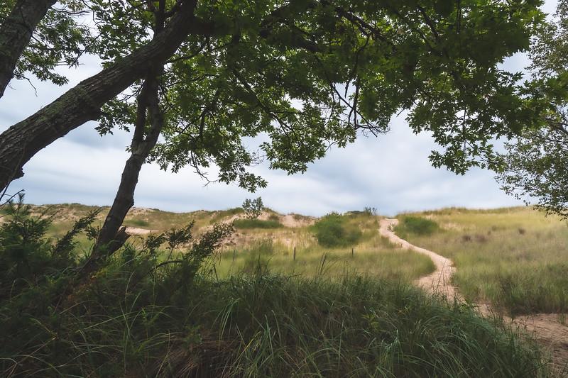 Ludington State Park in Ludington Michigan