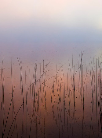 A foggy morning with the sunrise reflected in a peaceful lake.