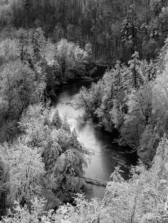 Manistee River In Black and White