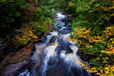 Flowing into Fall