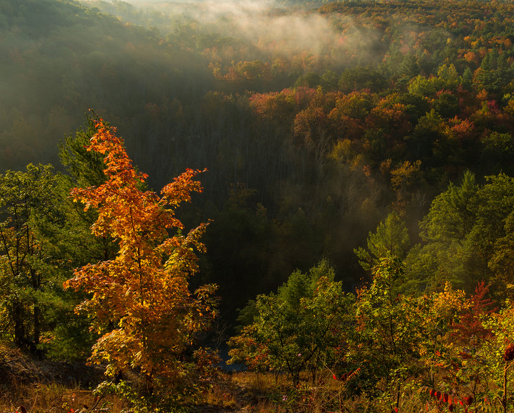 Autumn at High Rollways