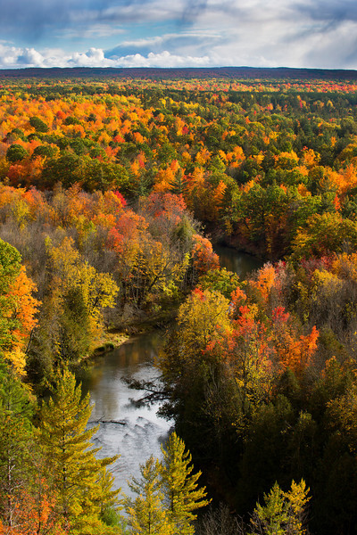 Manistee River in Fall