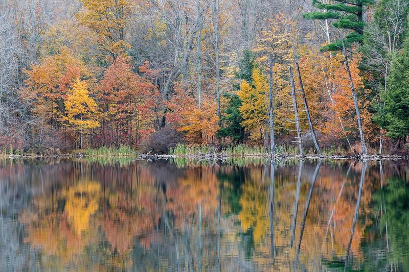 Late fall on the lake