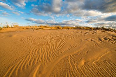 Dune Tracks